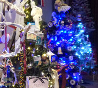 Christmas Tree Festival Opening Times